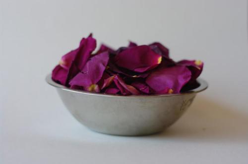 gallery petals
