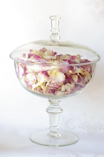 petals 10